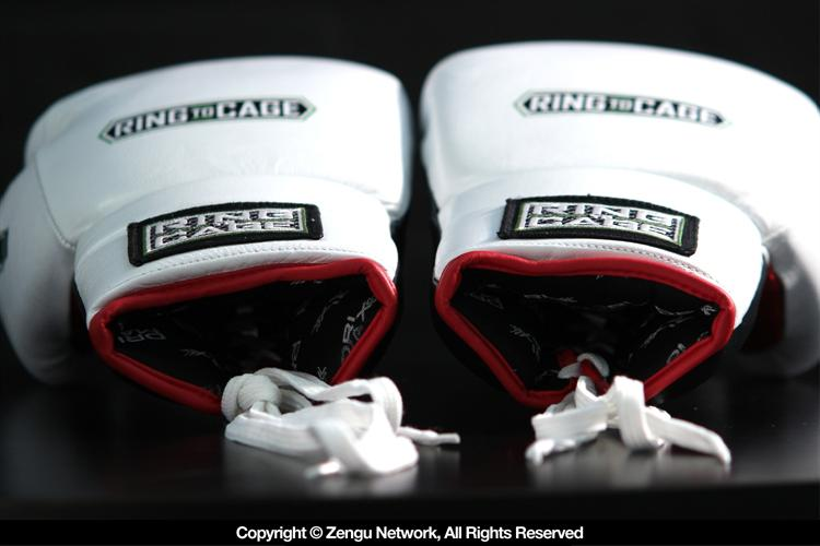 Ring To Cage MiM Foam Sparring Gloves (Lace Up)